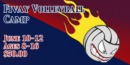 2013 Volleyball Camp