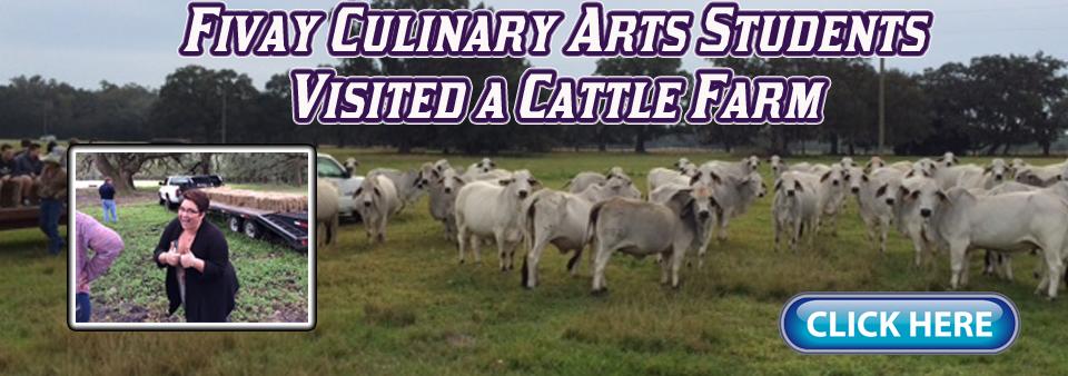 CattleFarm